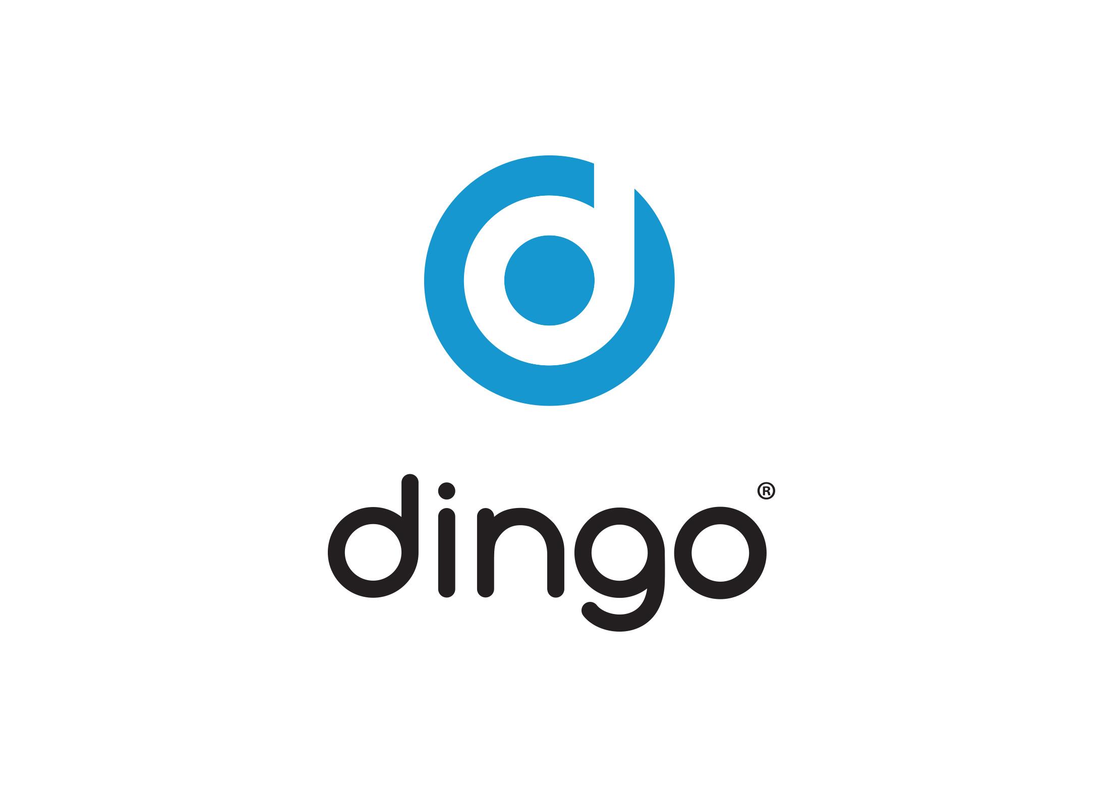 dingo_ci_01b